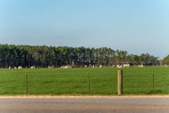 circle-f-farms-102620-1