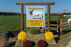 circle-f-farms-102620-5